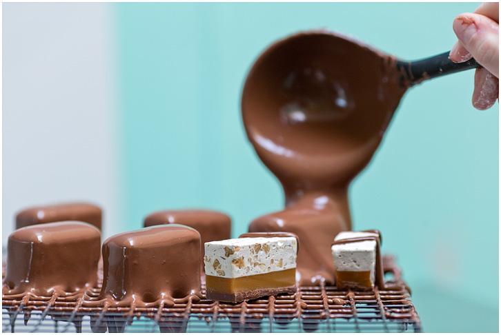 The Chocolate Lab-5