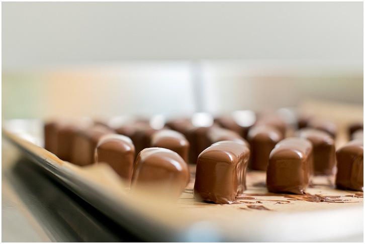 The Chocolate Lab-6